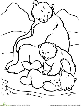 336x440 Cubs Coloring Pages Beautiful Polar Bear Family Coloring Page