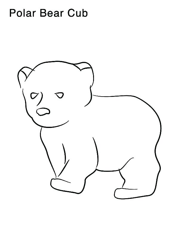 600x776 Polar Bear Coloring Pages Printable Polar Bear Coloring Pictures