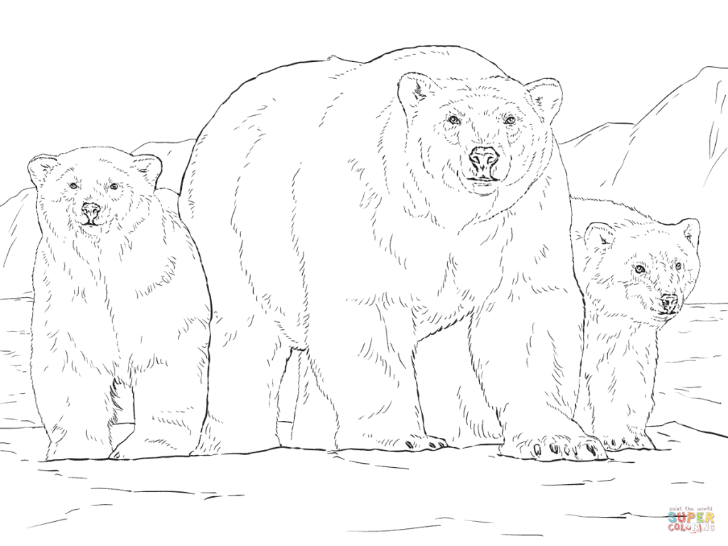 1024x768 Polar Bear With Two Cubs And Coloring Page