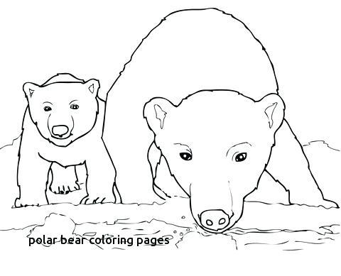 480x389 Bear Cub Coloring Pages Cub Scout Coloring Pages Cub Scout