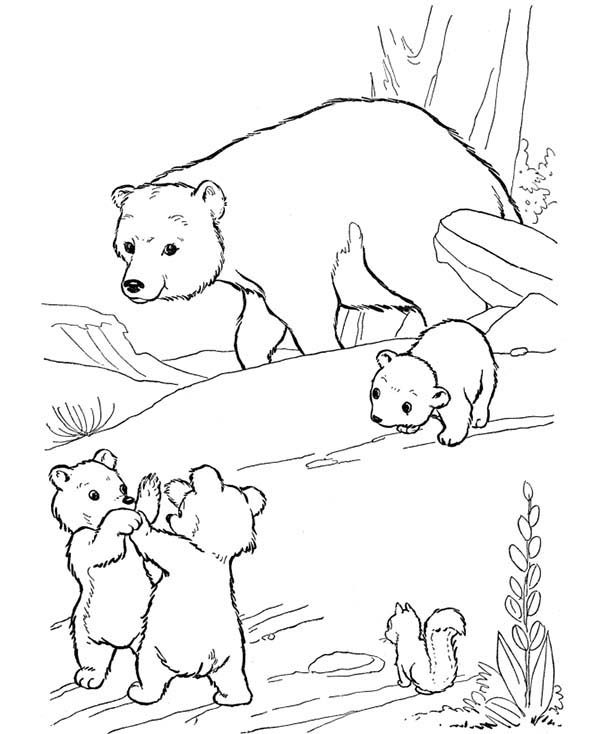 600x734 Uzak Little Bear Fight Among Themselves Coloring Page