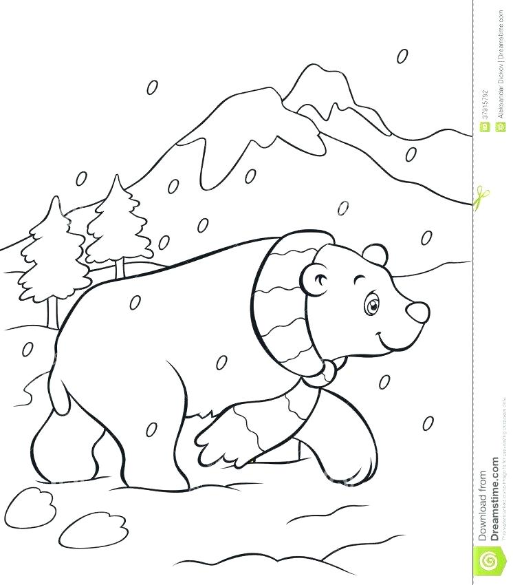 746x850 Bear Cub Coloring Sheets Baby Pages Polar Fuhrer Von
