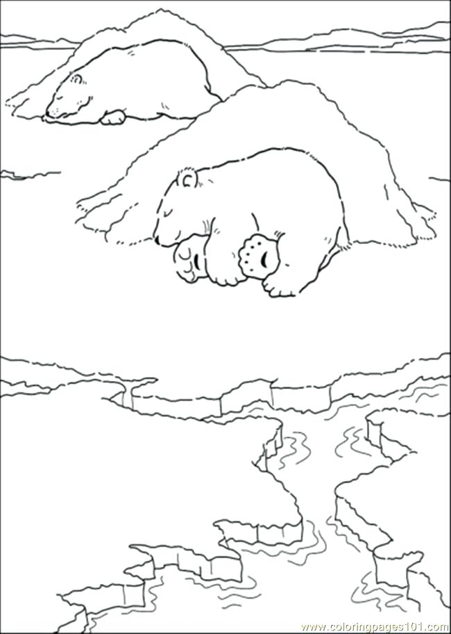 650x912 Coloring Pages Of Polar Bears Polar Bear Coloring Pages Polar