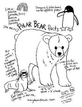 270x350 Fun Facts About Polar Bears Free Hand Drawn Printable Coloring Page