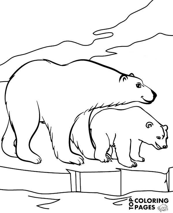 600x740 Two Beautiful Polar Bears In Arctics Printable Coloring Page, Sheet