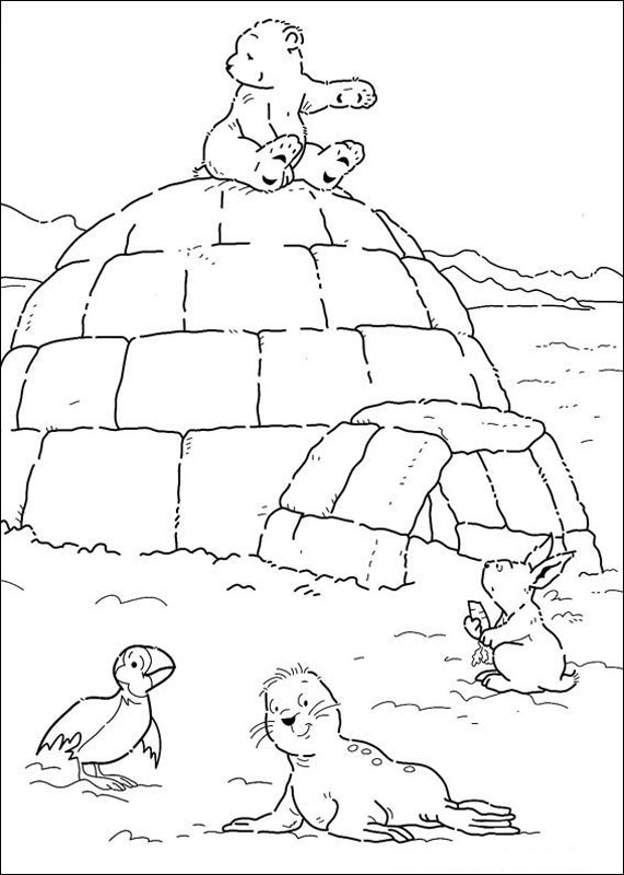 571x800 Polar Bear Coloring Pages For Kids