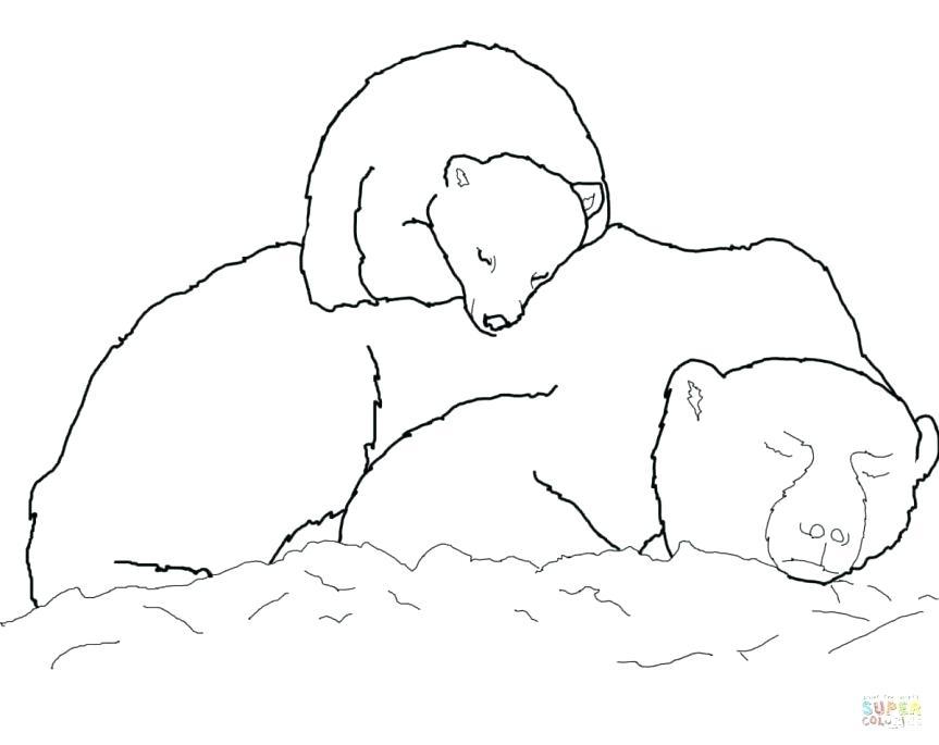863x685 Coloring Book Polar Bear Polar Bear Coloring Pages Polar Bear