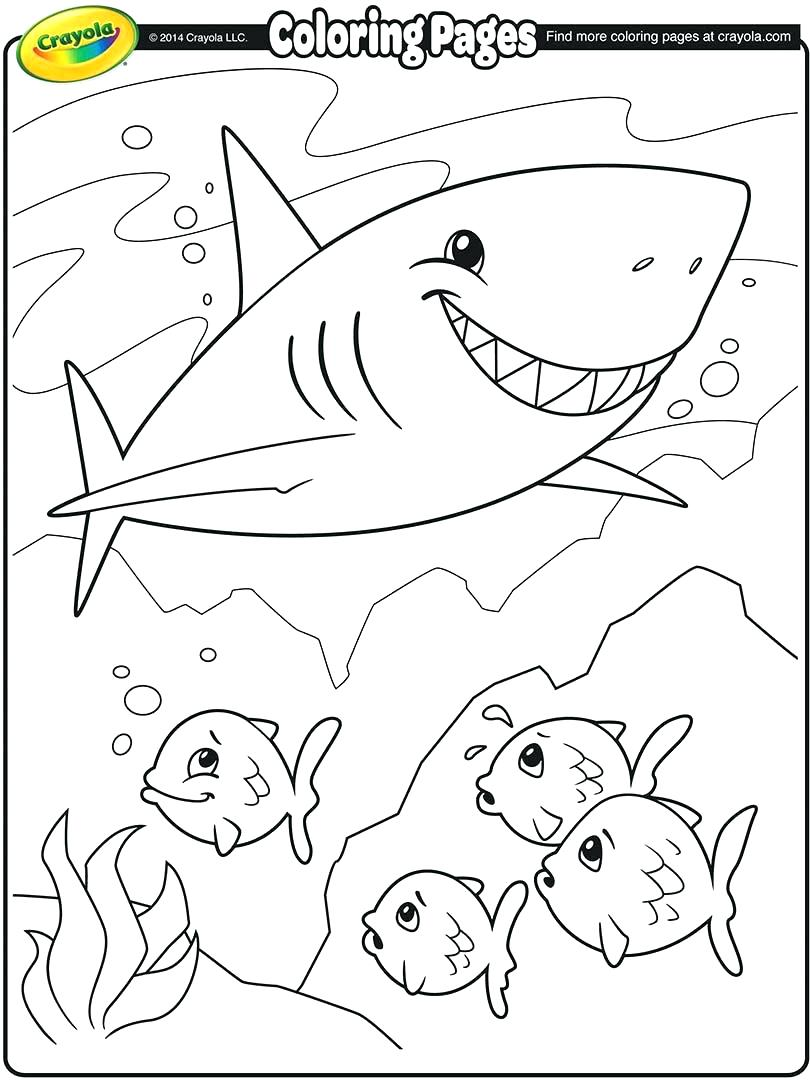 810x1080 Coloring Pages Polar Express Coloring Pages Polar Express