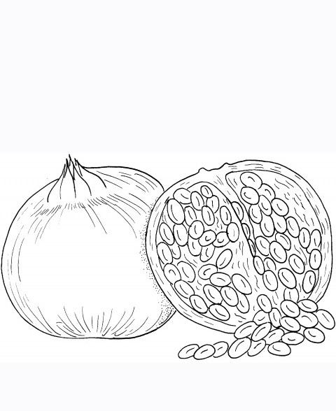 How to Make Colorful Pumpkin Seed Art in Preschool   588x480