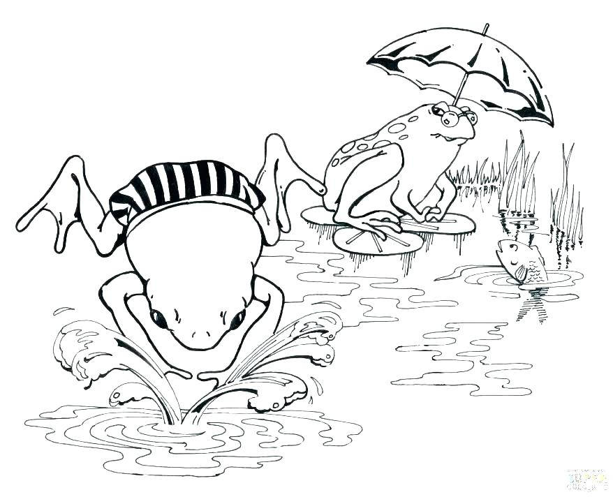 878x712 Swimming Coloring Page Swimming Pool Colouring Page Swimming