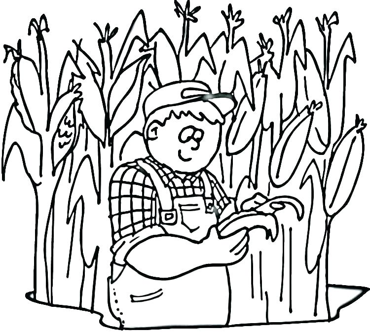 750x673 Corn Coloring Sheets Squash Coloring Page Vegetables Corn Coloring
