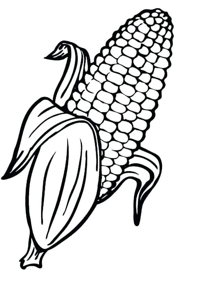 750x1000 Popcorn Coloring Sheet Popcorn Kernel Coloring Page Sheet Pages
