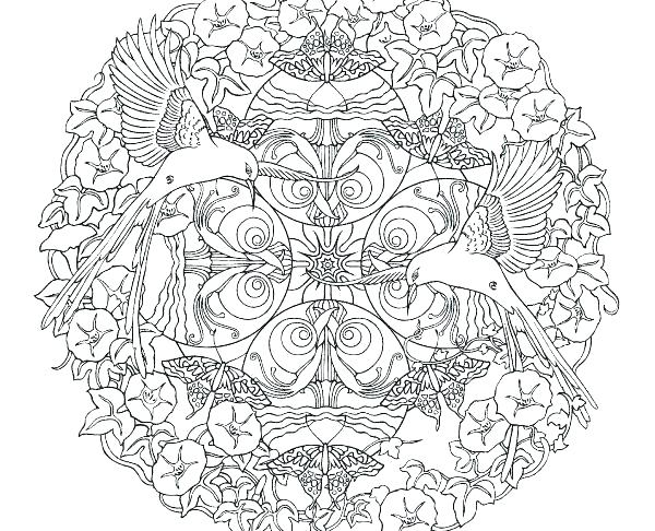 600x486 Nature Coloring Page Coloring Pages For Adults Nature Nature