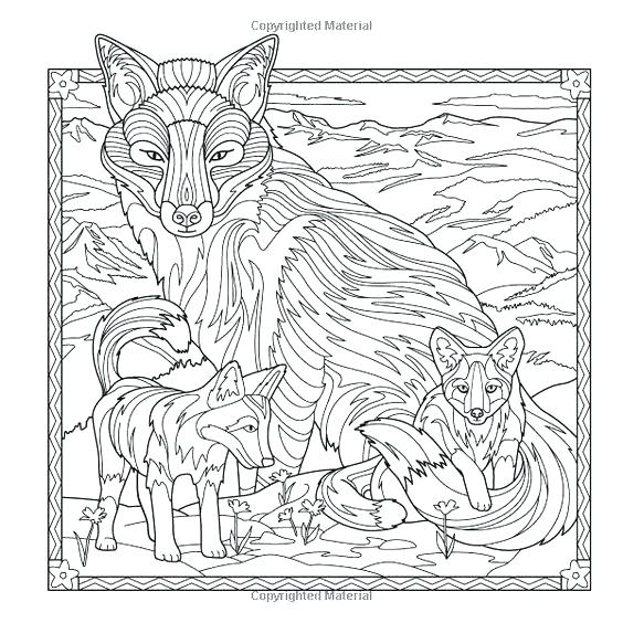 564x564 Wolf Coloring Book For Adults