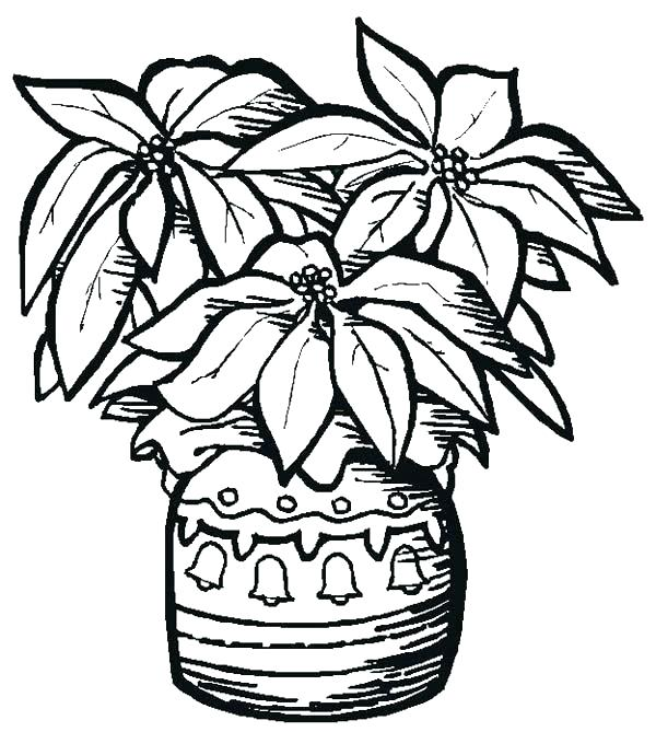 Pottery Coloring Pages At Getdrawings Com Free For Personal Use