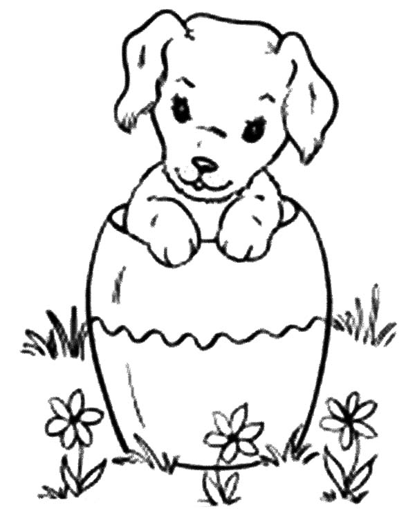 600x736 Chihuahua Dog Inside Pottery Coloring Pages