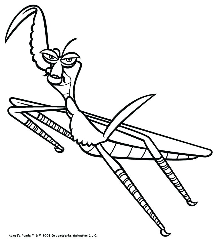 761x850 Praying Mantis Coloring Page Praying Mantis Coloring Page Adorable
