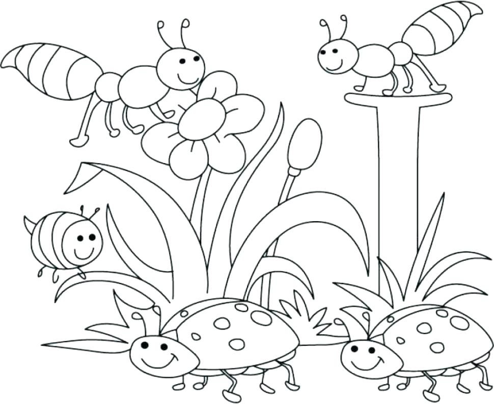 970x793 Spring Bugs Coloring Pages Preschool In Spring Color Spring Bugs