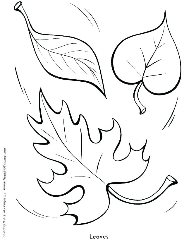 670x820 Pre K Coloring Pages Icontent