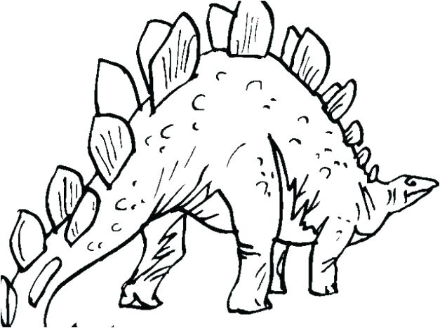 627x468 Stegosaurus Coloring Page Pages Dinosaurs Page Dinosaur Bones New