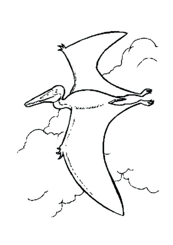 581x822 Dino Coloring Pages Dangerous Stegosaurus Flying Prehistoric Bird
