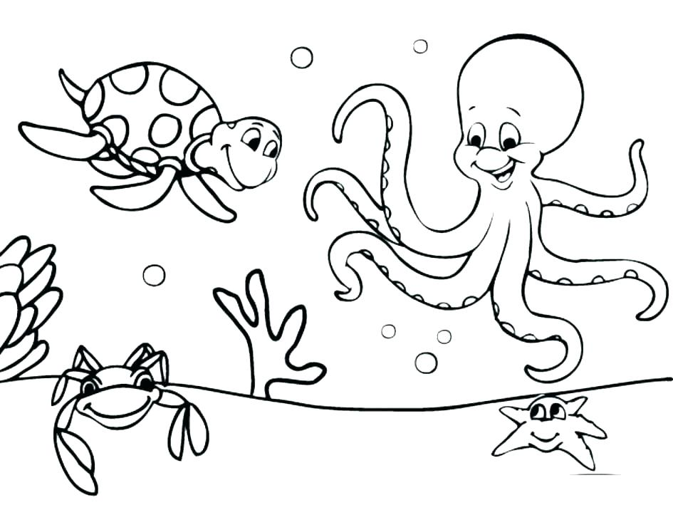 Preschool Farm Animal Coloring Pages At Getdrawings Com Free For