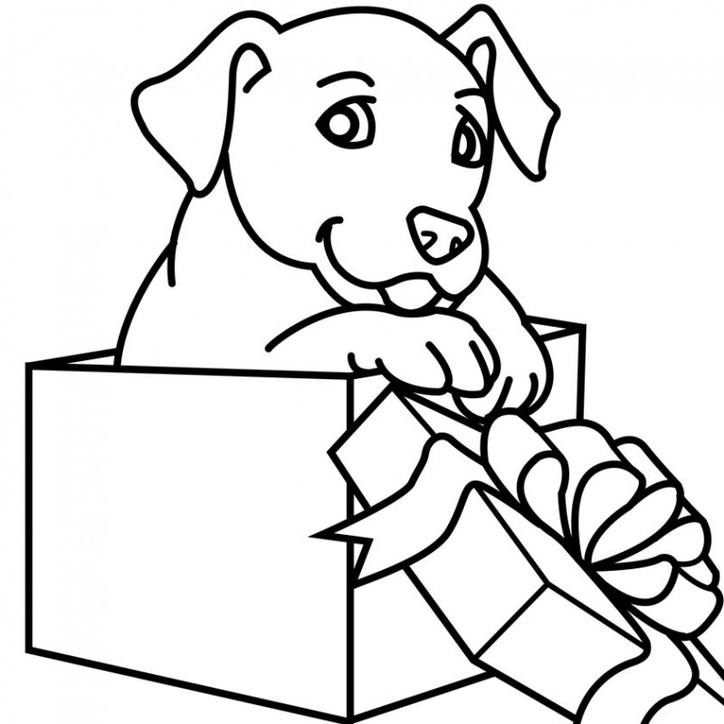 800x800 Christmas Puppy Coloring Pages Dalmatian In A Gift Box