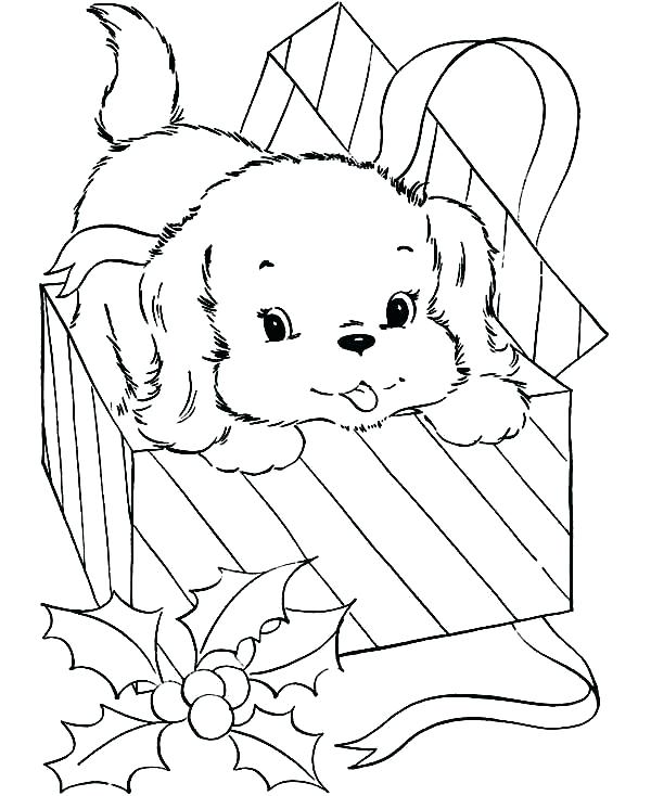 600x734 Box Coloring Page Coloring Sheets Plus Box Coloring Page Dogs