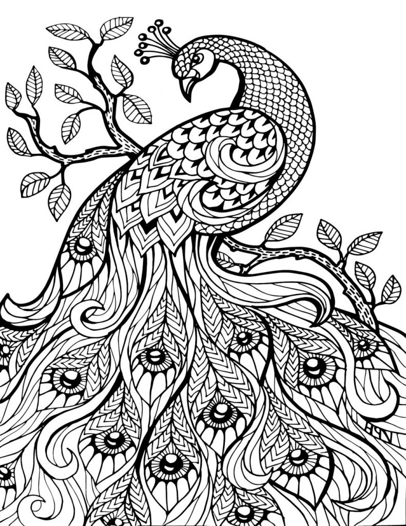 791x1024 Pretty Coloring Pages