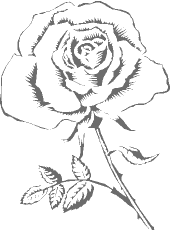 344x460 Pretty Rose Coloring Pages