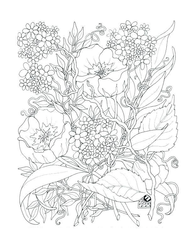 618x800 Pretty Flower Coloring Pages Coloring Pages Of Flowers And Hearts