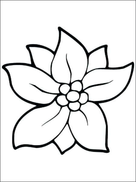 450x602 Flowers Coloring Pages Coloring Pages With Flowers Coloring Page
