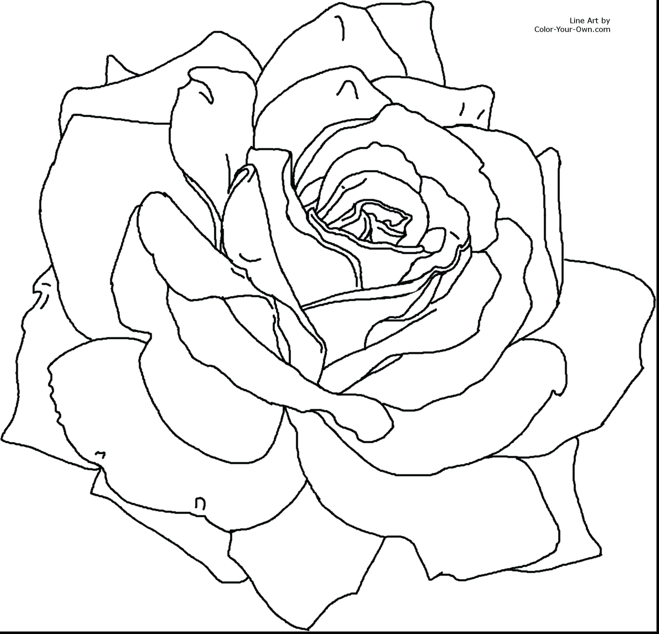2640x2542 New Printable Flower Coloring Pages For Girls Gallery Printable