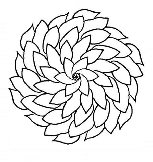 600x635 Pretty Flower Coloring Pages