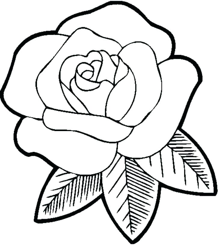 728x813 Pretty Flower Coloring Pages Coloring Pages For Flowers Beautiful