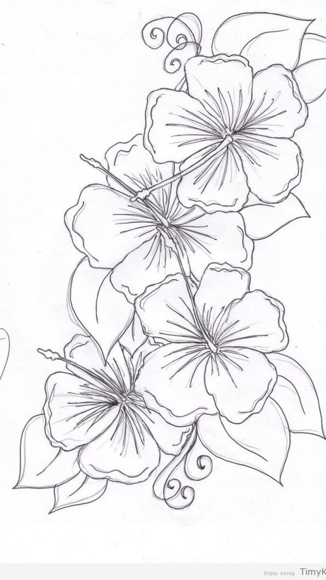 1080x1920 Beautiful Flower Coloring Pages Timykids