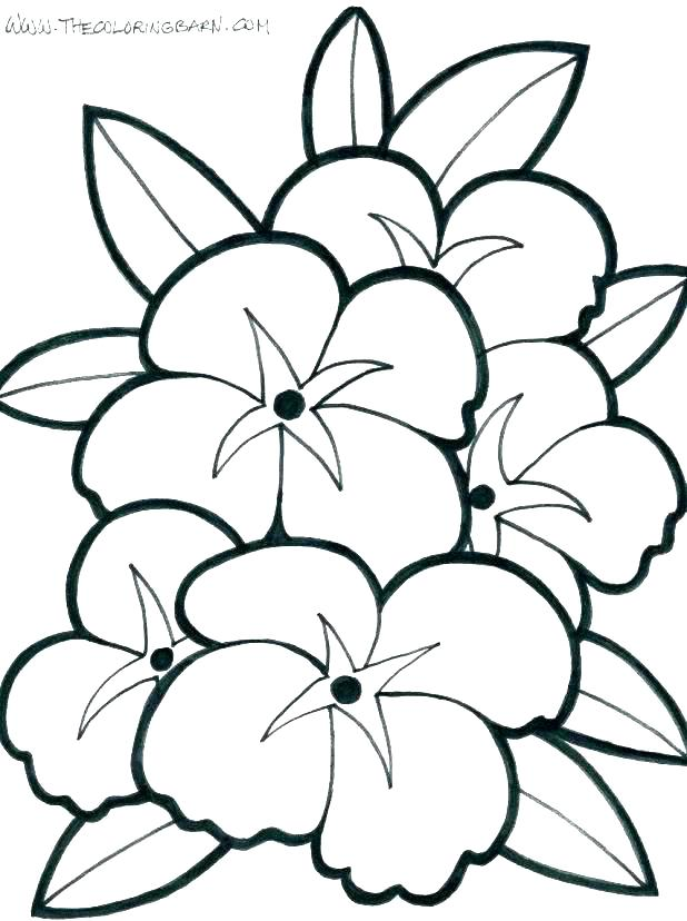 618x828 Coloring Images Of Flowers Flower Coloring Pages For Kids To Print