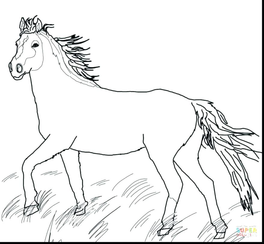 878x812 Cute Horse Coloring Pages Great Wild Horse Coloring Pages