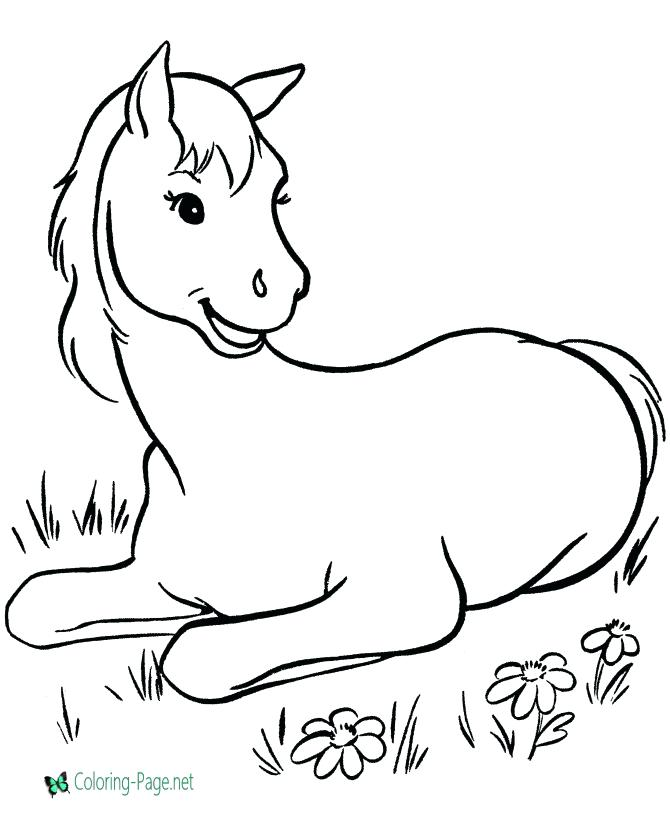 670x820 Cute Horse Coloring Pages Horse Cute Horse Coloring Pages Cute