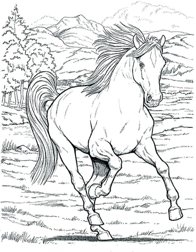 671x862 Horse Coloring Pictures Coloring Pages Pretty Horse Colouring