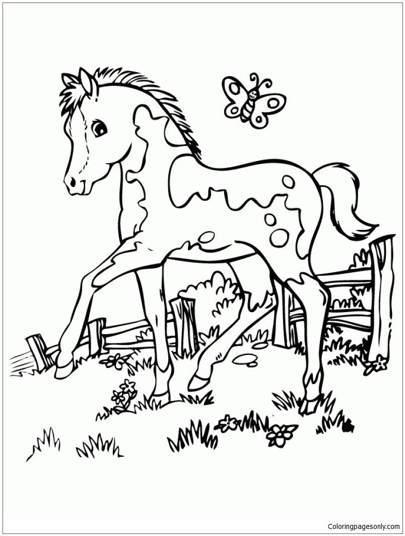 804x1063 Amazing Marvelous Cute Horse Coloring Page Online Image Of Trends