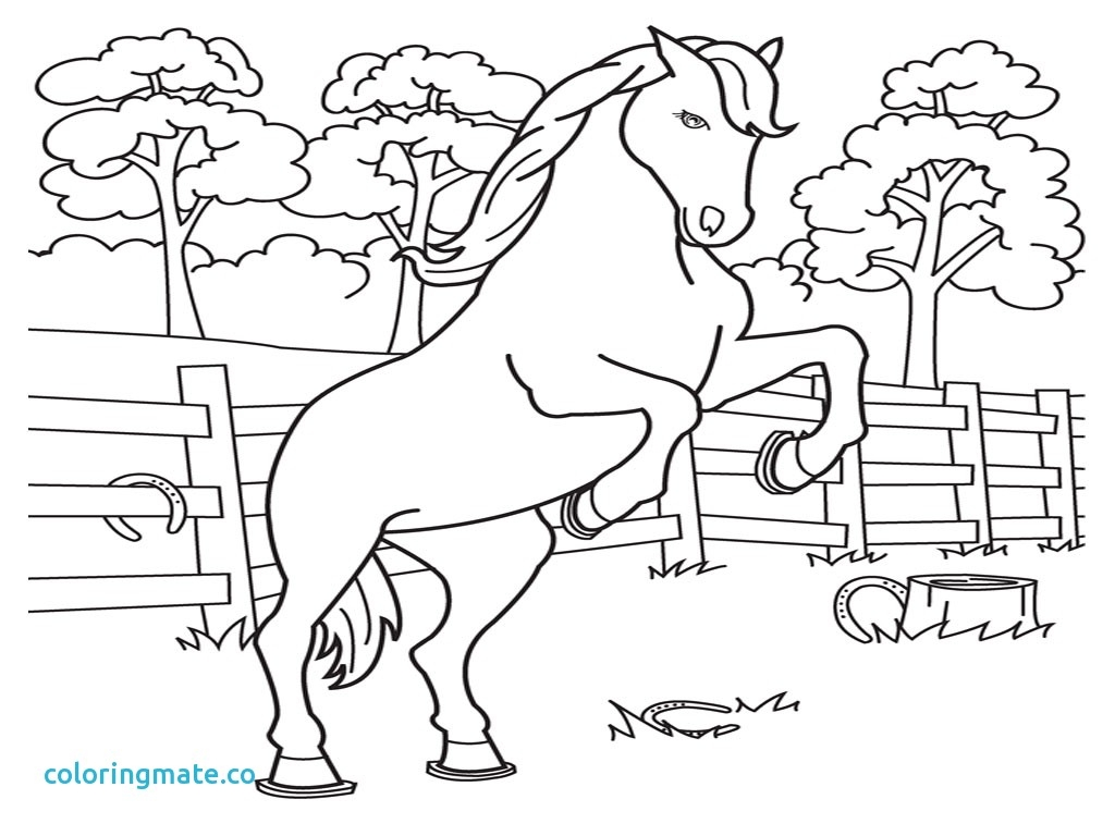 1024x768 Printable Horse Color Pages Free Coloring Pages Download