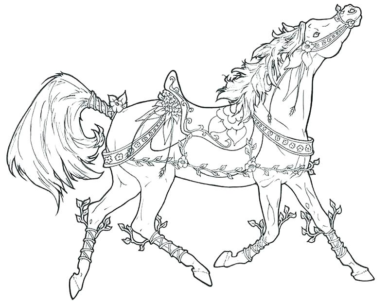 800x620 Horse Coloring Pages For Adults
