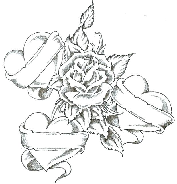 618x642 Nice Roses Coloring Pages Best And Awesome Col Unknown Nice Roses