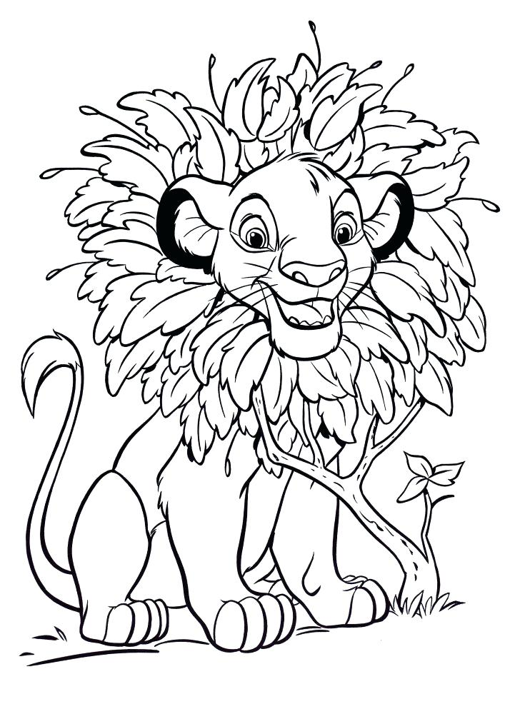 728x993 Simba Coloring Page Medium Size Of Coloring Pages With Wallpaper