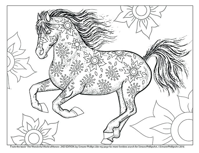 684x527 Beautiful Horse Coloring Pages Beautiful Princess And Her Horse