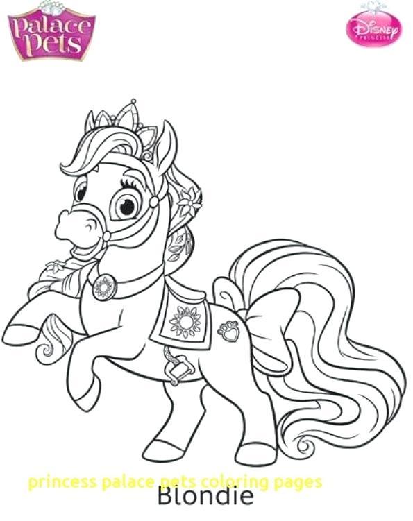 595x751 Princess Pets Coloring Pages
