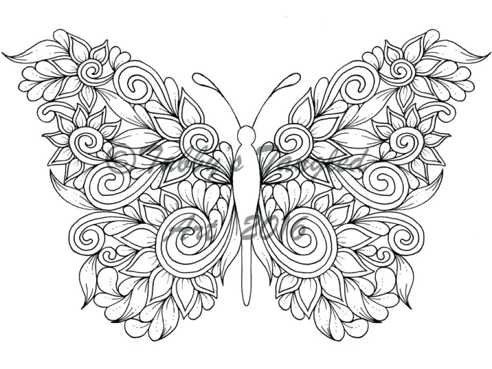 Print Butterfly Coloring Pages At Getdrawings Free Download