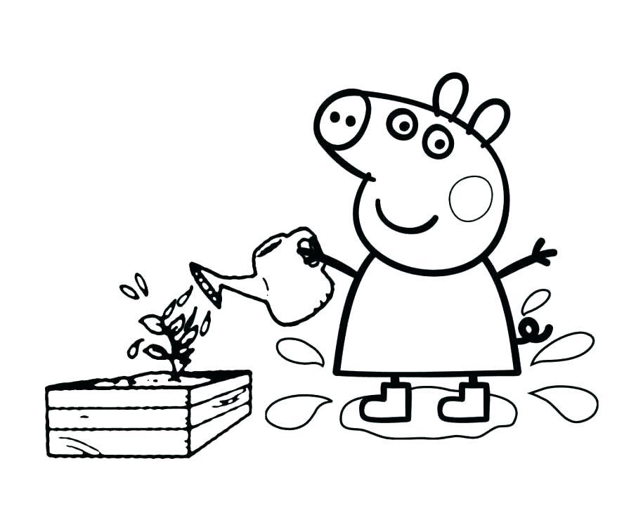 878x737 Coloring Peppa Pig