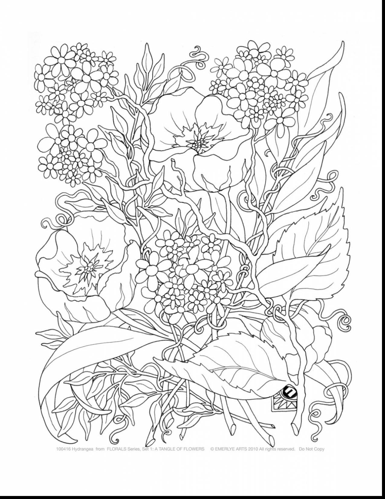 1274x1650 Cool Surprising Free Printable Flower Coloring Pages For Adults